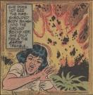 superman 237 0029 - Copy